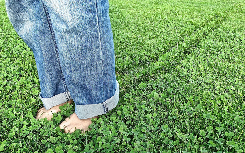 What does the ecological footprint test