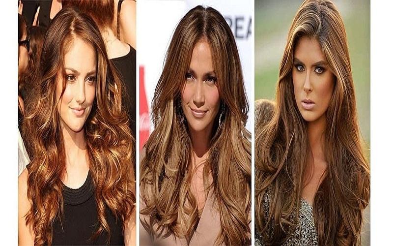 top chocolate hair