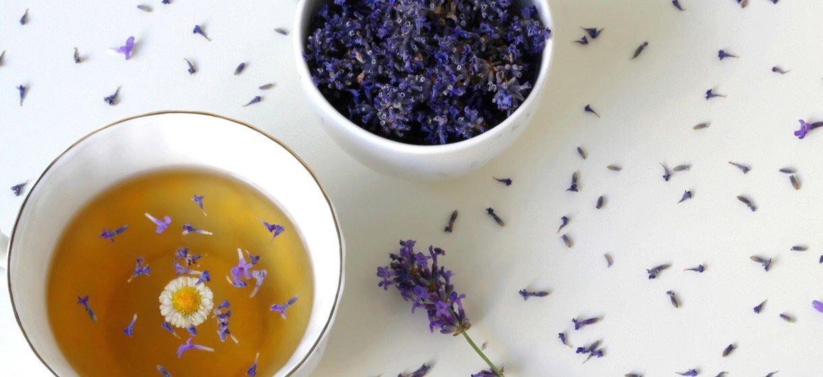 lavender tea benefits