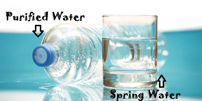 Purified Water Vs Spring Water
