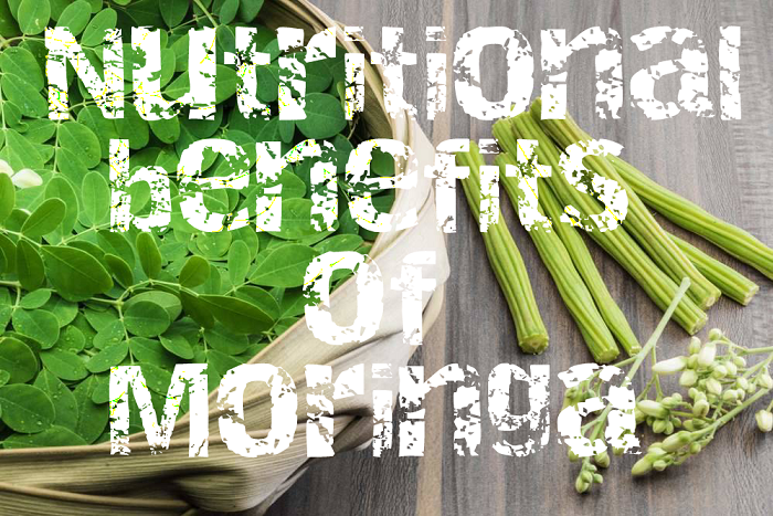 nutritional benefits of moringa