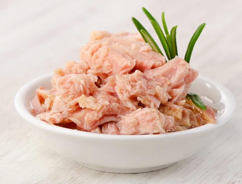 Canned tuna in pregnancy